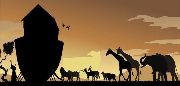 أبرز الأنبياء بين المسيحية والإسلام: 3-النبي نوح عليه السلام