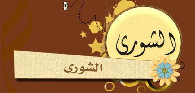 الديمقراطية بين الإسلام والمسيحية (2/2)