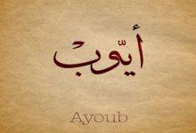 النبي أيوب