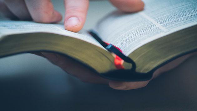 هل يحوي الكتاب المقدس التوراة والإنجيل والزبور؟